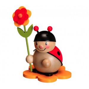 Marienkäfer mit Blüte rechts