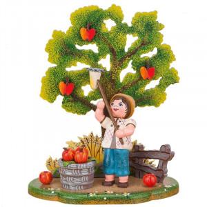 Landidyll Apfelernte