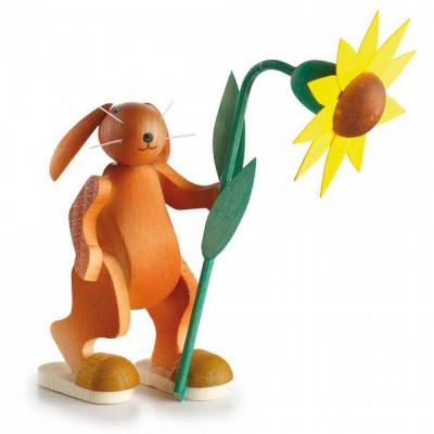 Hase mit Sonnenblume